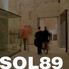 Sol89