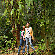 Two young woman hiking jungle trail on Cockscomb Basin Wildlife Sanctuary, Belize