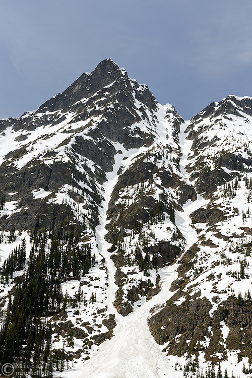 Avalanche chutes on Whistler Peak in North Cascades National Park, Washington State, USA.  Photographed from Rainy Pass.
