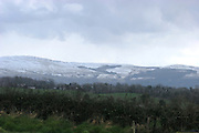 Cooley Mountain, snow.