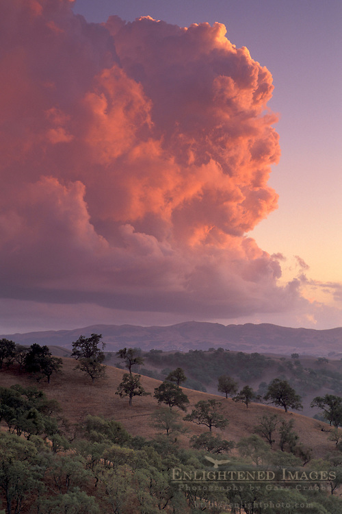 Alpenglow on Cumulonimbus storm cloud at sunset over hills and oak trees, Mount Diablo State Park, Contra Costa, California