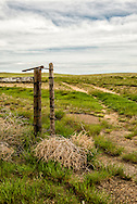 Gate, south of Cohegen, Montana