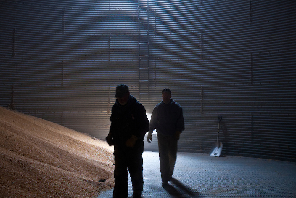 Mark Nelson, left, and a farm hand inside a corn silo on Wednesday, November 30, 2011 in Webster City, IA.