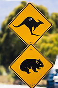 Animals Crossing sign on Great Western Highway from Sydney, New South Wales, Australia