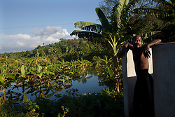 Renee Fedner, 41, stands above a flooded banana tree field in Quartier Couzen, a small community southwest of Port au Prince.   Hurrican Sandy brought heavy flooding to the region , destroyed crops and livestock and will seriously hinder farmers' abilities to grow food in the future.
