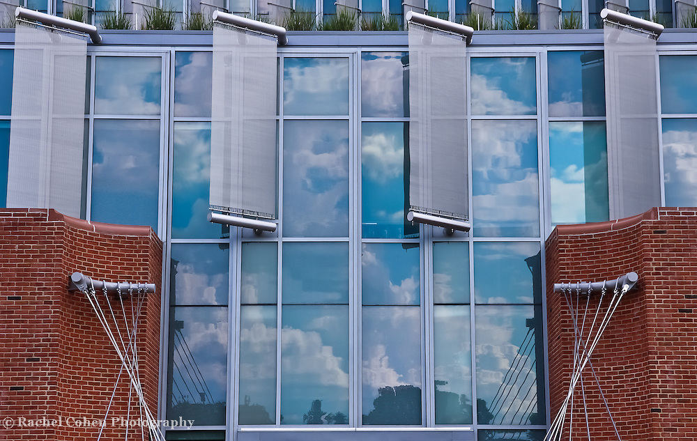 &quot;Reflections Intertwined&quot;<br />