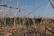 the big Bambu sculpture on the Met rooftop NY189A