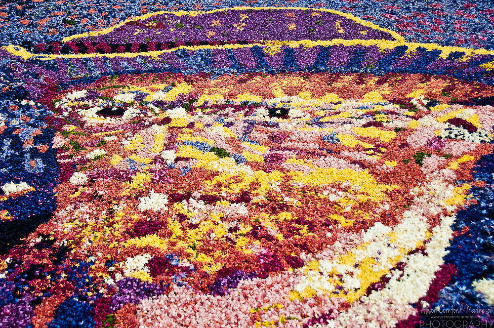 A portrait of Vincent Van Gogh, made of flowers, in Keukenhof Gardens.