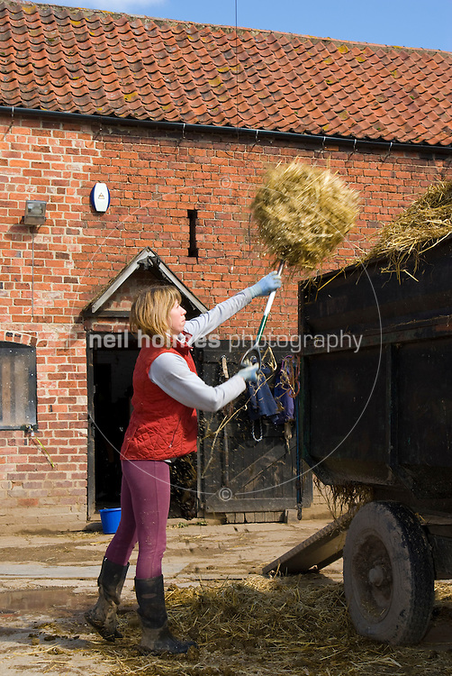Kate Wilkinson working  at Skidby Livery Yard, Specialists in problematic horses.