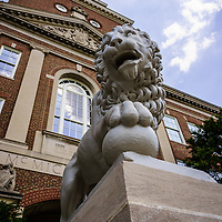 Photo of Mick lion at McMicken Hall at the University of Cincinnati. Mick and Mack are two stone lions at the entrance of McMicken Hall and were a gift to the University of Cincinnati in 1904. Image is vertical, high resolution and was taken in 2012.