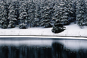 Snow blankets Douglas fir trees around Reservoir 5, one of three open reservoirs at Mt Tabor Park and of five total in Portland.  The 3 open reservoirs in Mount Tabor Park were placed in the National Register of Historic Places on January 15, 2004.  Environmental Protection Agency (EPA) regulation: Long Term 2 Enhanced Surface Water Treatment Rule, referred to as the LT2 rule imposes new requirements that open water reservoirs be covered, buried or additionally treated.  This applies to Portland's five open reservoirs and to the unfiltered Bull Run source supplying them.  Photo: January 2002.  Nikon F4, 24-85/2.8-4D.  Kodak E100VS