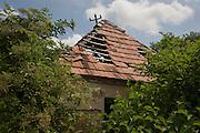 Collapsing roof of abandoned house belonging to poor, rural housing near the town of Bakonyszentlaszlo, Gyor-Moson-Sopron, Hungary