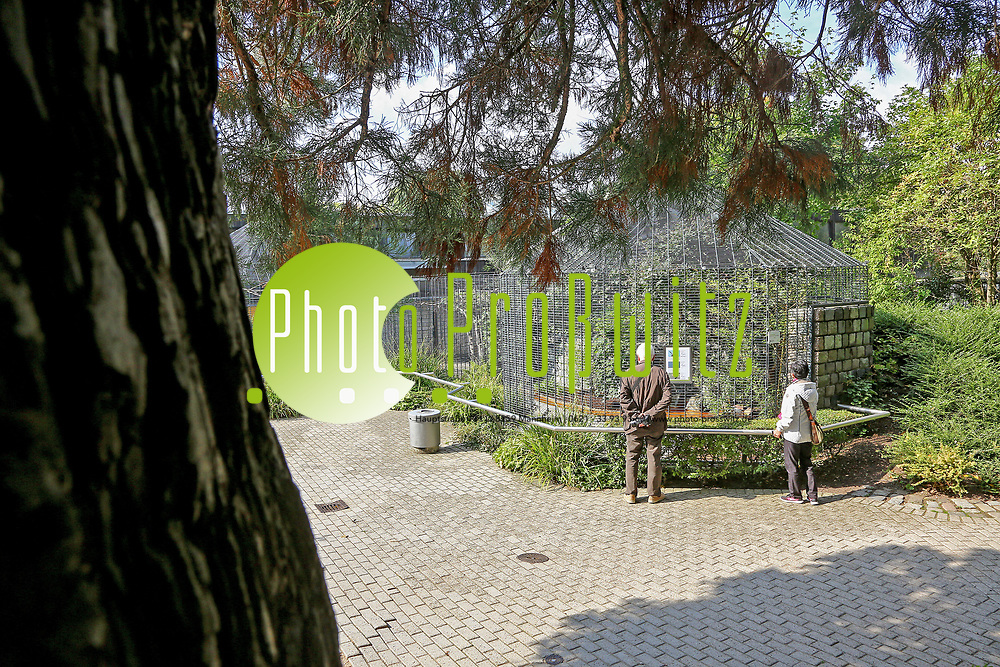 Mannheim. 28.09.17 | 27 Millionen f&uuml;r die Stadtparks<br /> Luisenpark. Bis 2025, wenn die Bundesgartenschau 1975 dann 50 Jahre zur&uuml;ckliegt, sollen in den Luisenpark 27 Millionen Euro investiert werden. Herzst&uuml;ck ist ein neues Erlebniszentrum rund um das Pflanzenschauhaus, das umfangreich modernisiert und ausgebaut werden soll - mit Restaurant, Insektarium sowie einem &uuml;berdachten, geheizten Ruhe- und Entspannungsbereich.<br /> <br /> <br /> BILD- ID 1055 |<br /> Bild: Markus Prosswitz 28SEP17 / masterpress (Bild ist honorarpflichtig - No Model Release!)