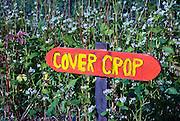 Berkeley, California, June, 2008-A sign hand painted by children labeling a cover crop at the Edible Schoolyard. The organic garden was founded by Alice Waters of Chez Panisse to involve students in all aspects of farming.