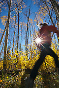 Trail Runner - Grand Teton National Park - Jackson - Wyoming - USA