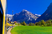 Between Zweilutschinen and Grindelwald, Swiss Alps, Canton Bern, Switzerland