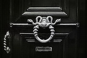 A symmetrical design of two snakes wrapped around a round silver door handle of an apartment building front door.