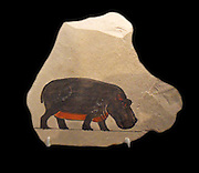 Artist's Painting of a Hippopotamus, Egypt, 18th Dynasty. Joint reign of Hatshepsut and Thutmose III. ca. 1479–1425 B.C. Upper Egypt; Thebes, Deir el-Bahri, Hatshepsut Hole, MMA 1922-1923