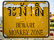 30 NOVEMBER 2014 - LOPBURI, LOPBURI, THAILAND: A sign warns pedestrians that they are entering the area where long tailed macaque monkeys live in Lopburi. The monkeys are the main tourist attraction in the town and there is an annual monkey buffet party for them. Lopburi is the capital of Lopburi province and is about 180 kilometers from Bangkok. Lopburi is home to thousands of Long Tailed Macaque monkeys. A regular sized adult is 38 to 55cm long and its tail is typically 40 to 65cm. Male macaques weigh around 5 to 9 kilos, females weigh approximately 3 to 6 kg. The Monkey Buffet was started in the 1980s by a local business man who owned a hotel and wanted to attract visitors to the provincial town. The annual event draws thousands of tourists to the town.    PHOTO BY JACK KURTZ