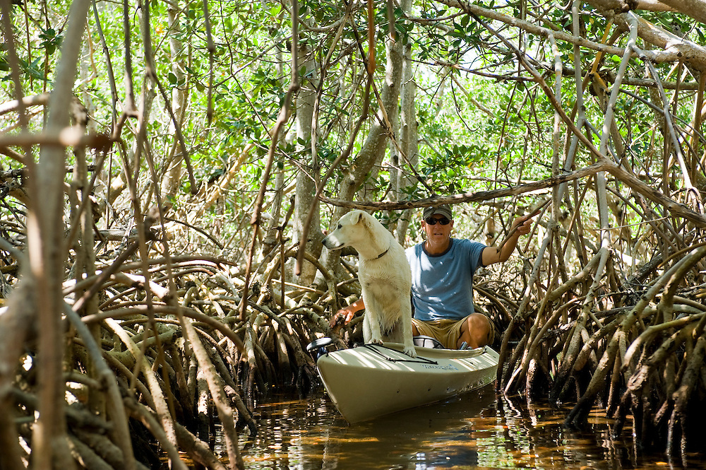 Pig Pine Kayak Adventures, Besitzer und Tourguide Bill Keogh, Florida Keys Kayaking and Kayak Tours, Big Pine Keys..Im Bild: Bill Keogh (Pig Pine Kayak Adventures) und sein Hund im Mangrovenwald..Florida 2009..Foto © Stefan Falke.