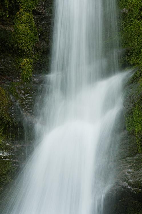 waterfall,rocks,umbrella plants