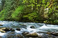 Salmon River - Mount Hood, Oregon Photos