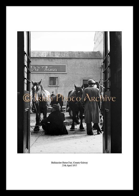 Menn og hester avbildet på Ballinasloe Horse Fair i Irland, 1957. Her kommer det årlig opp i mot.100 tusen mennesker for å se på showet. Kjøp bilder av Irland, fra Irland hos Irish Photo Archive.