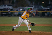Erial's Adam Holland pitches during a Section 4 Little League final against Cherry Hill held in Gloucester Sunday night.