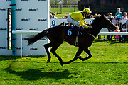 Just Hubert ridden by Martin Dwyer and trained by William Muir  - Ryan Hiscott/JMP - 19/04/2019 - PR - Bath Racecourse- Bath, England - Race 3 - Good Friday Race Meeting at Bath Racecourse