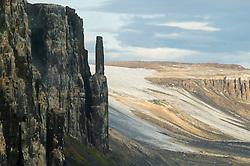 Alkefjellet bird cliffs in Hinlopen, Svalbard