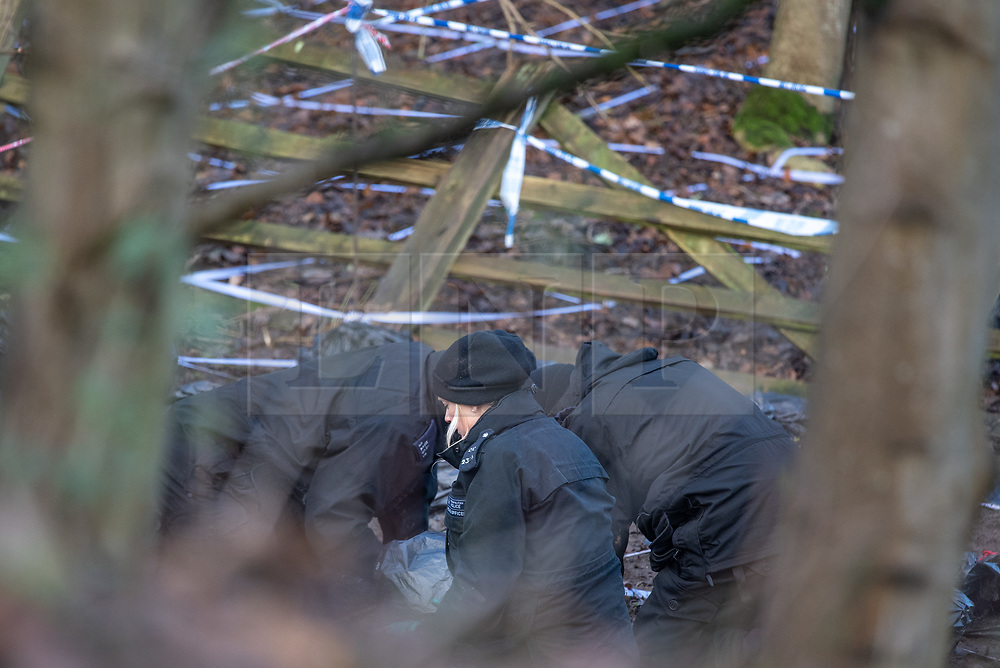 """© Licensed to London News Pictures. 11/12/2019. Gerrards Cross, UK. Police conduct a fingertip search on ground marked out by police tape in a grid formation in Gerrards Cross, Buckinghamshire as the Metropolitan Police Service continue to search woodland. Police have been in the area conducting operations since Thursday 5th December 2019. In a press statement issued on 7th December, a Metropolitan Police spokesperson said """"Officers are currently in the Gerrards Cross area of Buckinghamshire as part of an ongoing investigation.<br /> """"We are not prepared to discuss further for operational reasons."""" Photo credit: Peter Manning/LNP"""