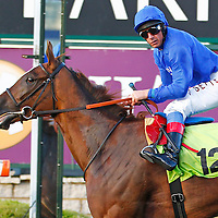 Silent Moment and Frankie Dettori winning the 8.20 race