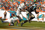 Carolina Panthers quarterback Cam Newton (1) scores during the Panthers 20-16 win over the Miami Dolphins at Sun Life Stadium on Nov. 24, 2013 in  in Miami Gardens, Florida.                 ©2013 Scott A. Miller