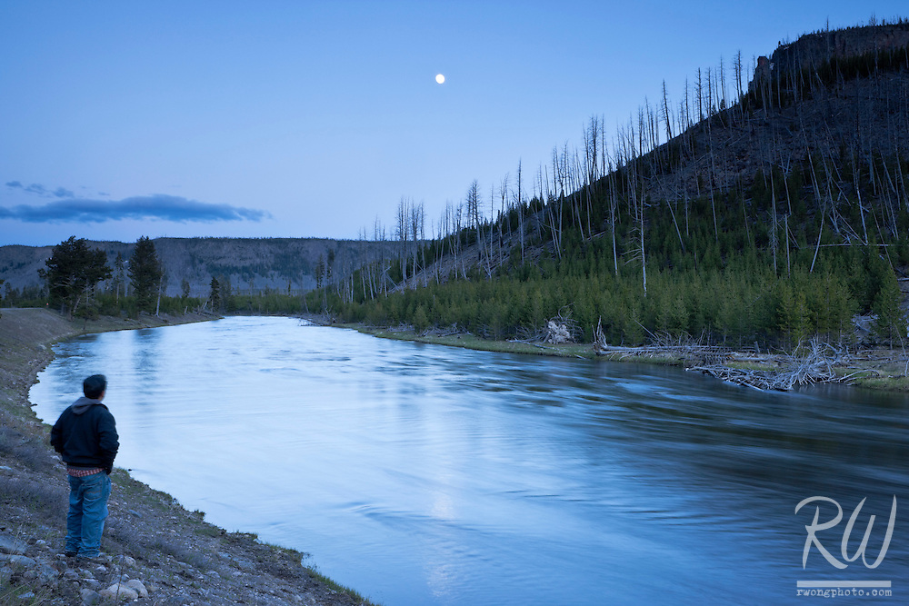 Tourist Standing Along Madison River at Dusk, Yellowstone National Park, Wyoming