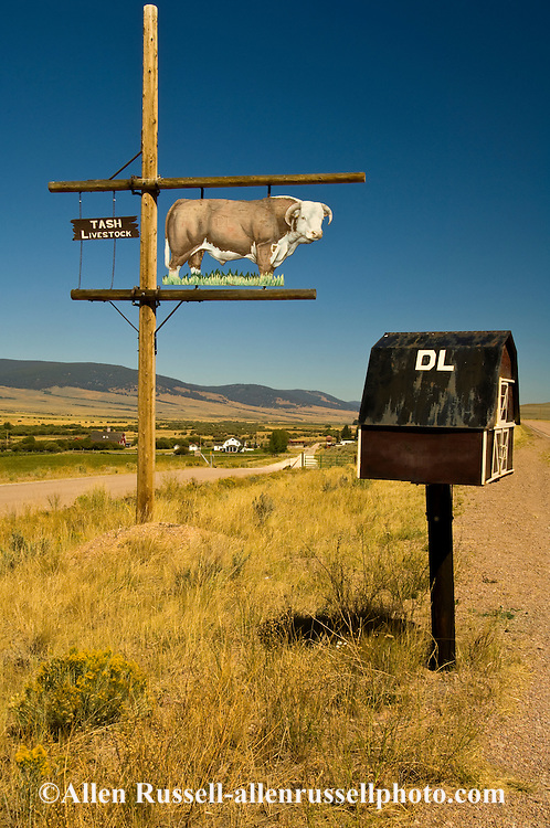 Mailbox, Hereford Ranch, Pioneer Mountains Scenic Byway, SW Montana