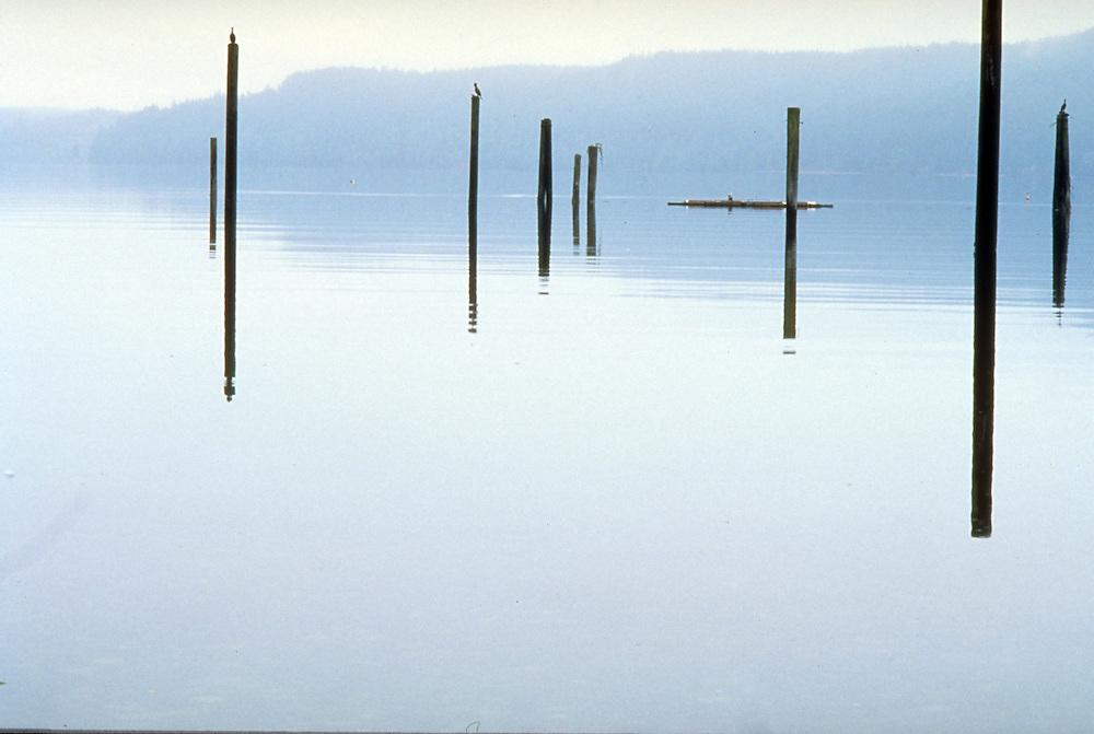 Quiet Washington state lake at dawn