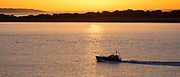 Motor boat at sea at sunset by the River Solent, UK