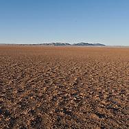 Mongolia. Gobi desert landscapes  Bulgan /  paysage du desert de Gobi  Bulgan - Mongolie