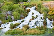 Alpheus Creek  cascading,  Snake River Canyon, Twin Falls, Idaho.