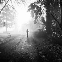 A lone runner, running through the fog toward the sun on an Autumn morning.