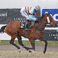 Lady Lunchalot and Richard Hughes winning the 2.55 race