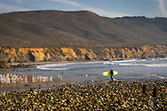Surfer coming ashore near Big Sur, California