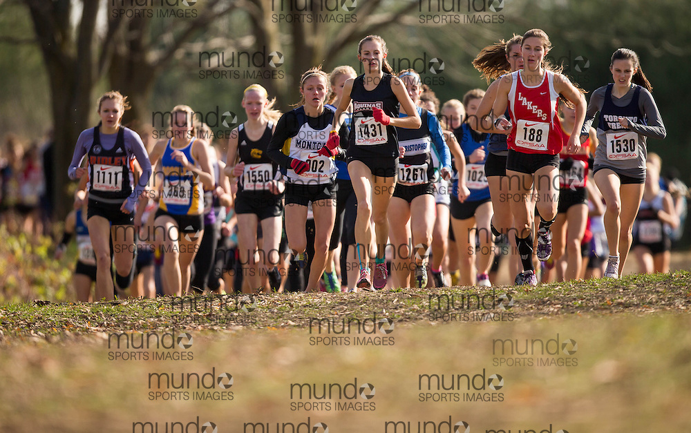 Brampton, Ontario ---2012-11-03--- \o1431\ of \o1431#4\ competes in the \o1431#2\  race at the 2012 OFSAA cross country championships at Heart Lake Conservation area in Brampton, Ontario, November 3, 2012. .GEOFF ROBINS Mundo Sport Images