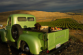 Mercer estates winery image library example