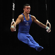 Paul Ruggeri III, Manlius, New York, in action on the Still Rings during the Senior Men Competition at The 2013 P&G Gymnastics Championships, USA Gymnastics' National Championships at the XL, Centre, Hartford, Connecticut, USA. 16th August 2013. Photo Tim Clayton