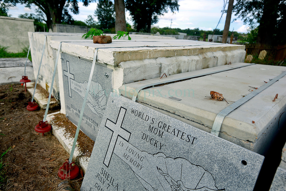 23 August 2013. Braithwaite, Louisiana.<br /> Hurricane Isaac 1 year later. Braithwaite Cemetery. <br /> DMORT (Disaster Mortuary Operational Response Teams) tombs provided by FEMA (Federal Emergency Management Agency) continue to await re-entombing.<br /> Photo; Charlie Varley