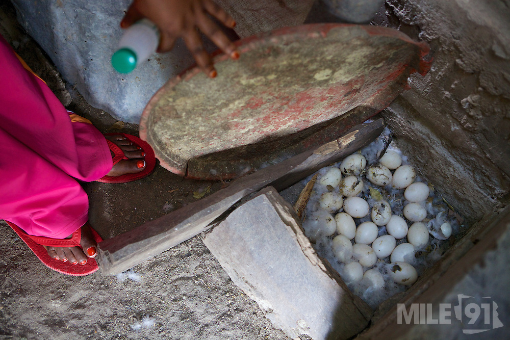 Haika Mshomi counting how many duck eggs have been laid.<br /> <br /> Haika set up and now runs a poultry business selling chickens, their eggs and also ducks, Mail Mojo Soweto, Tanzania.<br /> <br /> She attended MKUBWA enterprise training run by the Tanzania Gatsby Trust in partnership with The Cherie Blair Foundation for Women.