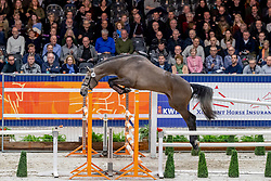 146, Manden I Sonderbygaard<br /> KWPN hengstenkeuring - 's Hertogenbosch 2020<br /> © Hippo Foto - Dirk Caremans<br />  30/01/2020