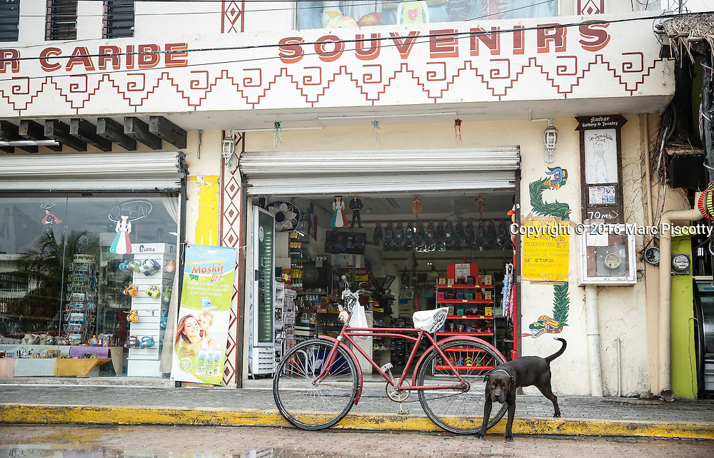 SHOT 12/10/16 8:56:11 AM - A dog pees on the back tire of a cruiser bike outside a souvenir shop in downtown Tulum, Mexico. Tulum is located in the Mayan Riviera and along the east coast of the Yucatán Peninsula on the Caribbean Sea in the state of Quintana Roo, Mexico. (Photo by Marc Piscotty / © 2016)
