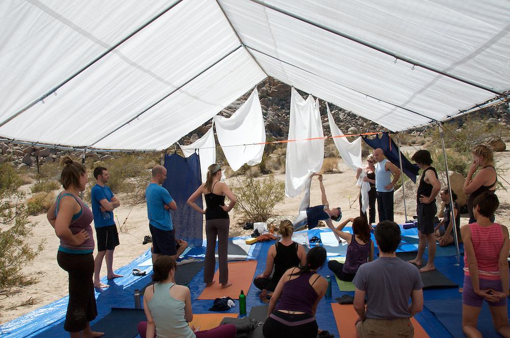 Yoga Retreat at Joshua Tree National Park